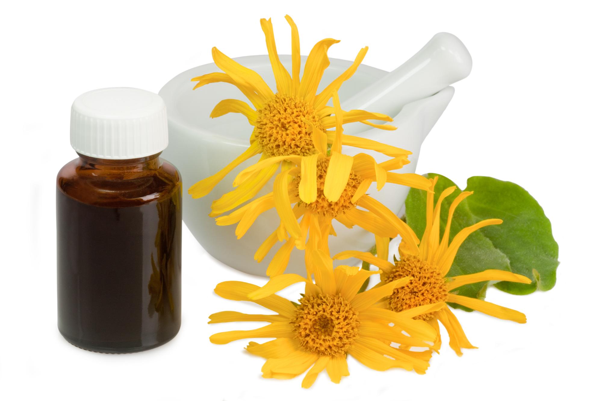 Arnika: 7 Wirkungen & 3 Anwendungen der Heilpflanze