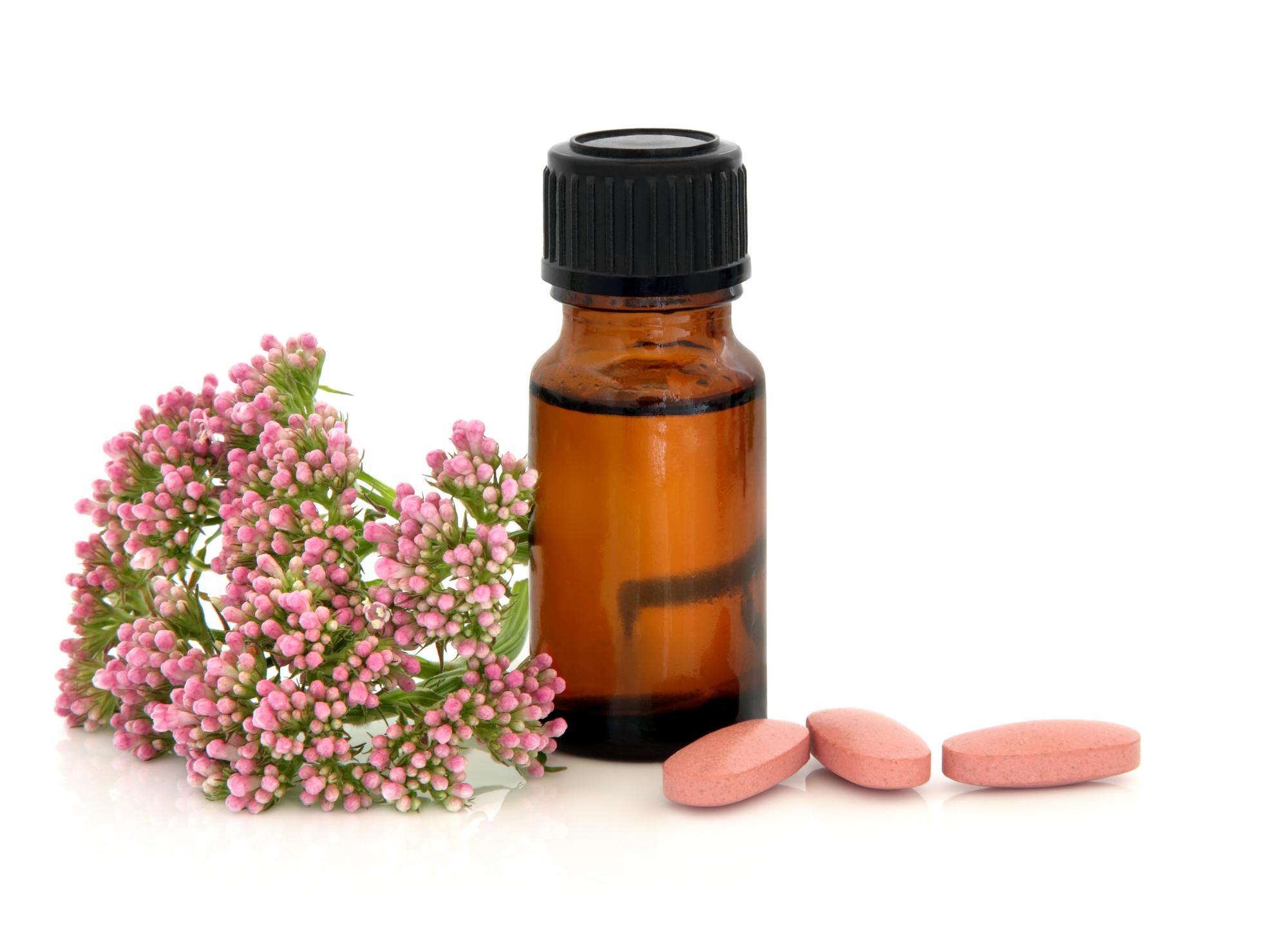 Baldrian: 6 Wirkungen & 4 Verwendungen der Heilpflanze