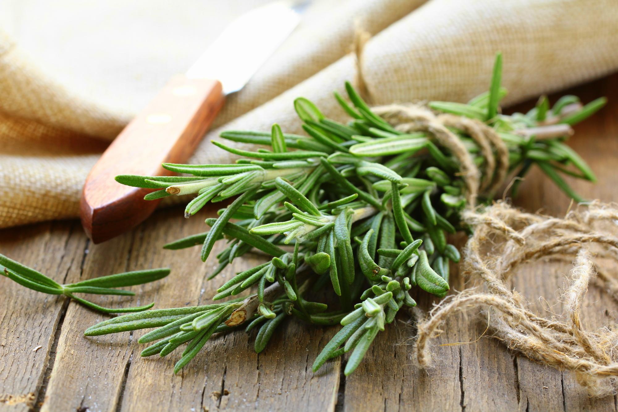 Rosmarin: 6 Wirkungen & 9 Verwendungen der Heilpflanze