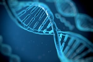 Vitamin-B12-Funktion-DNS